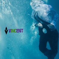 Vincent Inc