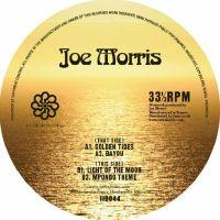 Joe Morris