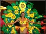 Summer Carnival Chart