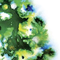 Andy Green [Verdant Recordings]