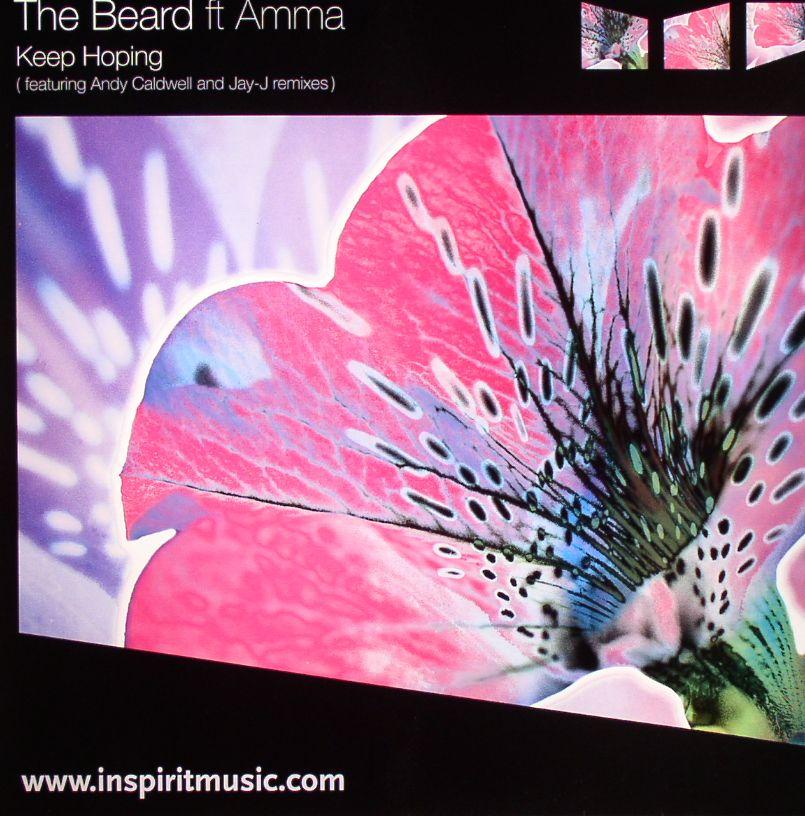 BEARD, The feat AMMA - Keep Hoping