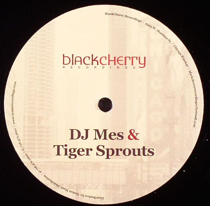 DJ MES/TIGER SPROUTS - Back To The Program