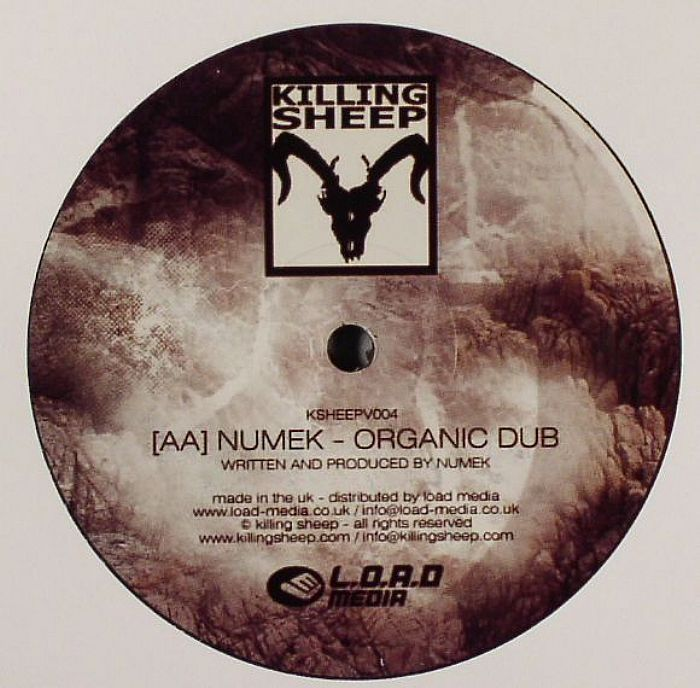 DJ Hidden / Numek - Times Like These / Organic Dub