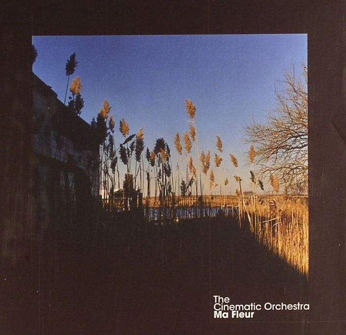 To Build A Home The Cinematic Orchestra Genre