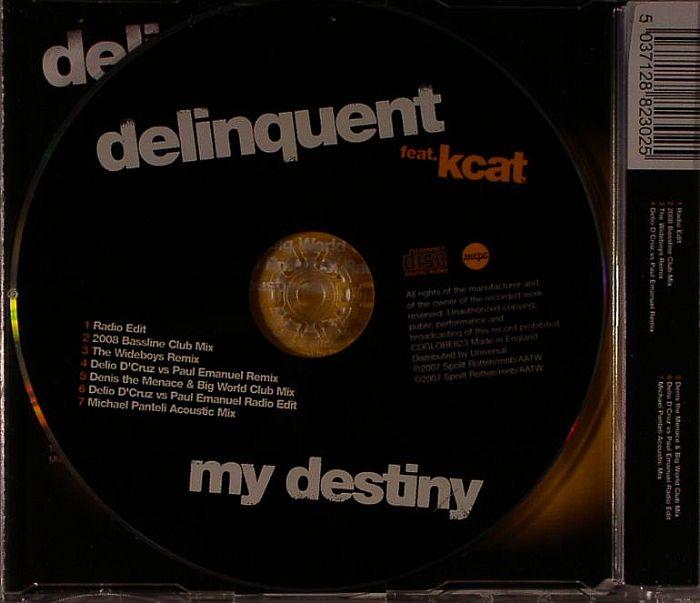 Delinquent Feat. Kcat - My Destiny
