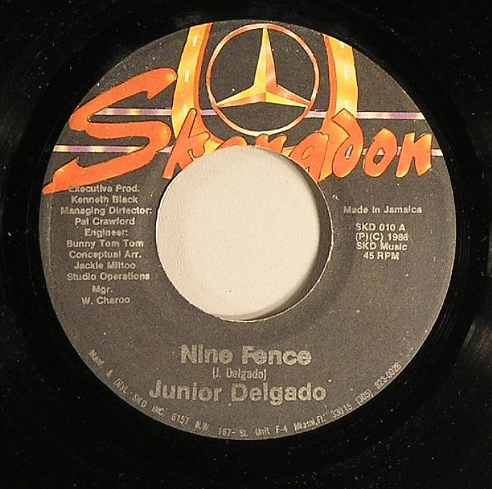 Junior Delgado - Tell Me How You Feel
