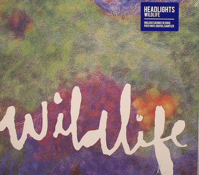 HEADLIGHTS - Wildlife