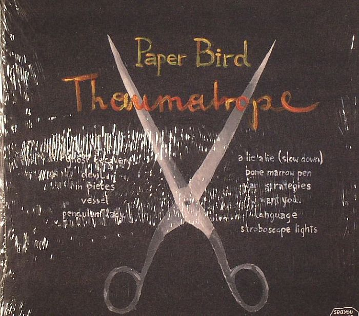 PAPER BIRD - Thaumatrope
