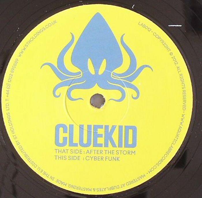 CLUEKID - After The Storm