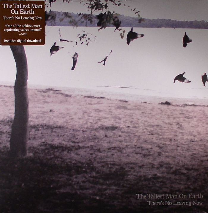 The Tallest Man On Earth There S No Leaving Now Vinyl At