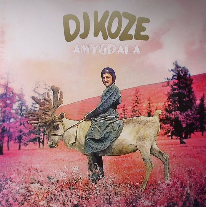 DJ KOZE Amygdala Vinyl At Juno Records