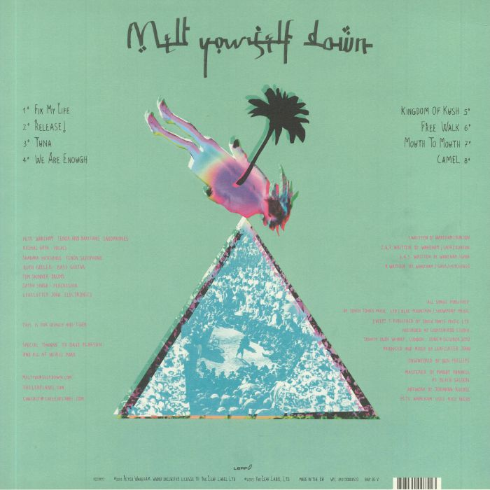 MELT YOURSELF DOWN - Melt Yourself Down