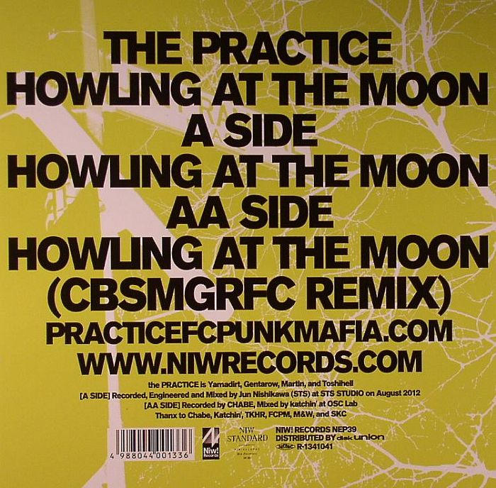 PRACTICE, The - Howling At The Moon