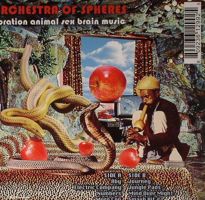 ORCHESTRA OF SPHERES - Vibration Animal Sex Brain Music