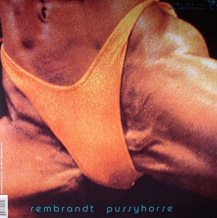 BUTTHOLE SURFERS - Rembrandt Pussyhorse