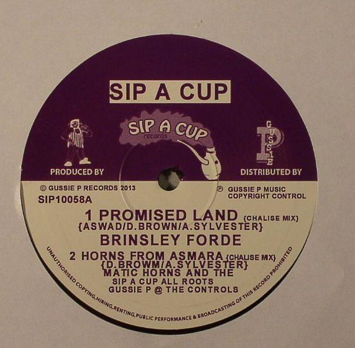 FORDE, Brinsley/MATIC HORNS/PRINCE LIVI JAH/GUSTUS P - Promised Land