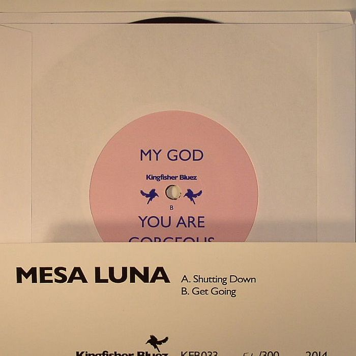 MESA LUNA - Shutting Down