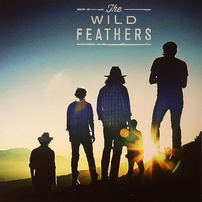 WILD FEATHERS, The - Got It Wrong (Record Store Day 2014)