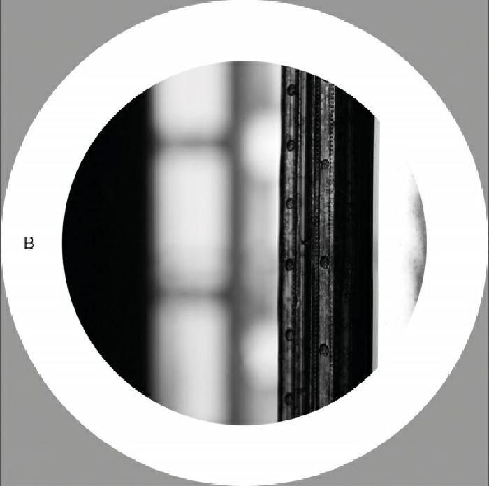 D_FUNC/MARCEL HEESE - Patience