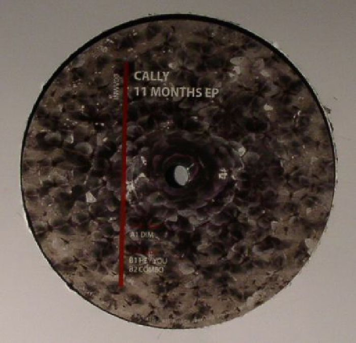 Cally 11 Months Ep Vinyl At Juno Records