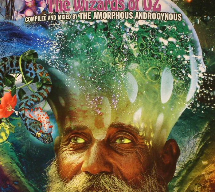 AMORPHOUS ANDROGYNOUS, The/VARIOUS - A Monstrous Psychedelic Bubble (Exploding In Your Mind):The Wizards Of Oz