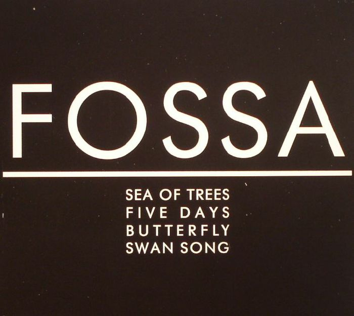 FOSSA - Sea Of Skies