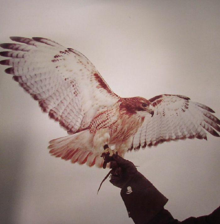 AIRIS, Jm - Wild Birds