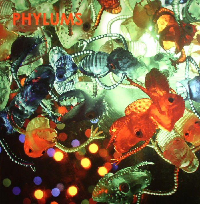 PHYLUMS - Phylum Phyloid