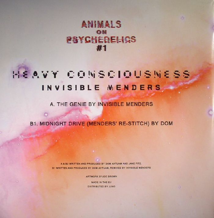 INVISIBLE MENDERS - Heavy Consciousness