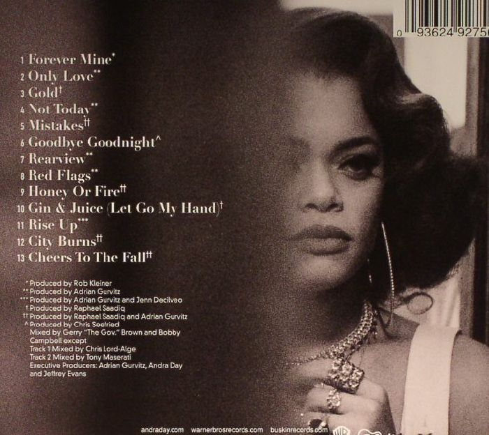 Rise Up Andra Day: Andra DAY Cheers To The Fall Vinyl At Juno Records