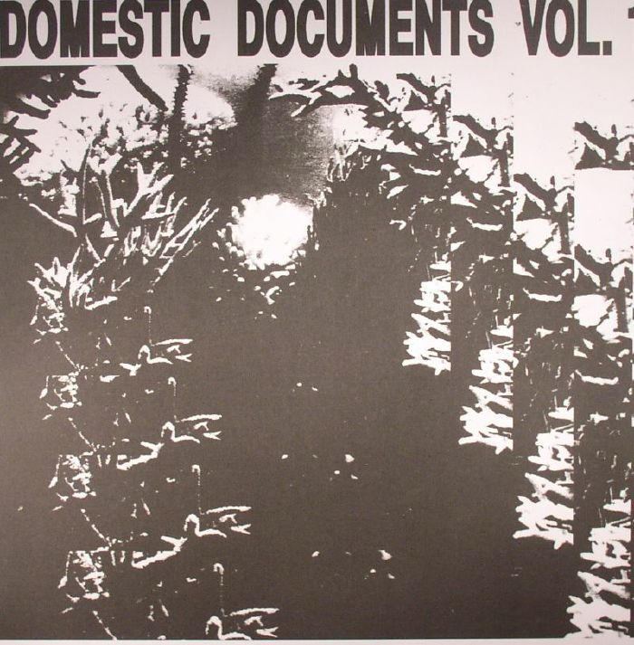 BUTTER SESSIONS/NOISE IN MY HEAD/VARIOUS - Domestic Documents Vol 1