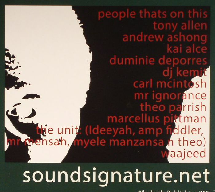 VARIOUS - Sound Signature Presents: These Songs That Should've Been Out On Wax By Now - Part Two