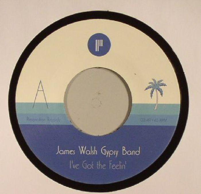 JAMES WALSH GYPSY BAND - I've Got The Feelin'