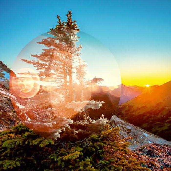 TEIELTE - Magnetic Soul/Magnetic Tree
