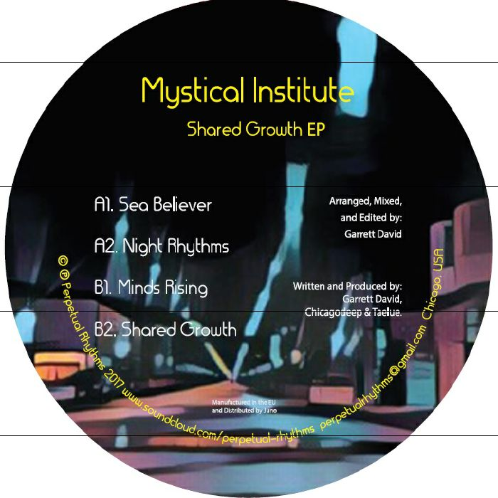 MYSTICAL INSTITUTE - Shared Growth EP