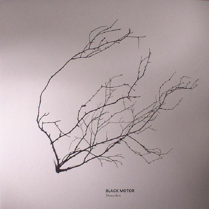 BLACK MOTOR - Branches