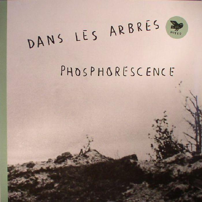 DANS LES ARBRES - Phosphorescence