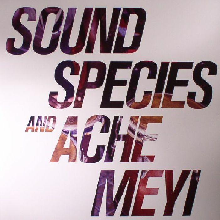 SOUNDSPECIES/ACHE MEYI - Soundspecies & Ache Meyi