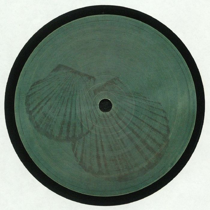 ROBERTO Pecten Gibbus Vinyl At Juno Records