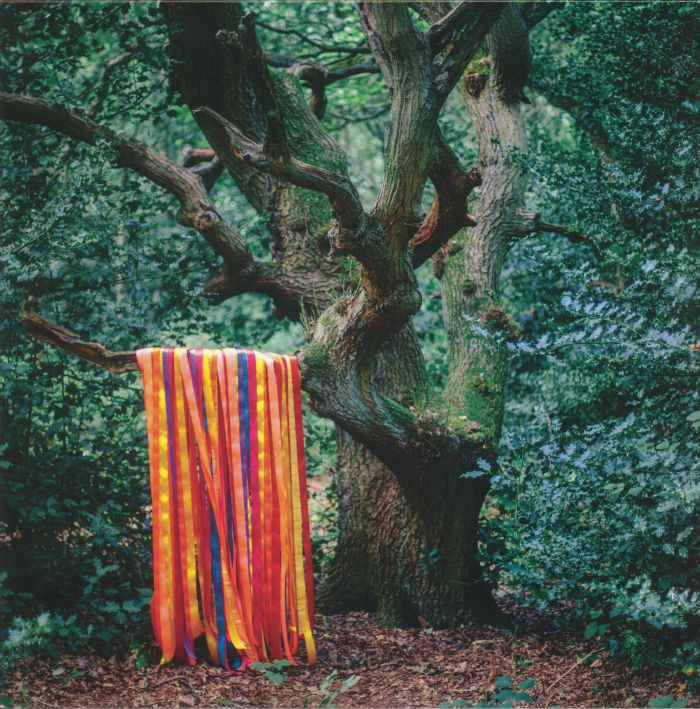HOLDEN, James/THE ANIMAL SPIRITS - The Animal Spirits