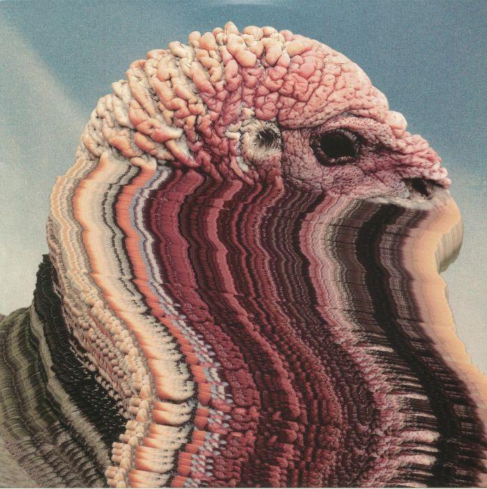 HOLY FUCK - Bird Brains
