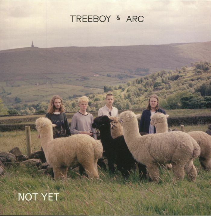 TREEBOY & ARC - Not Yet