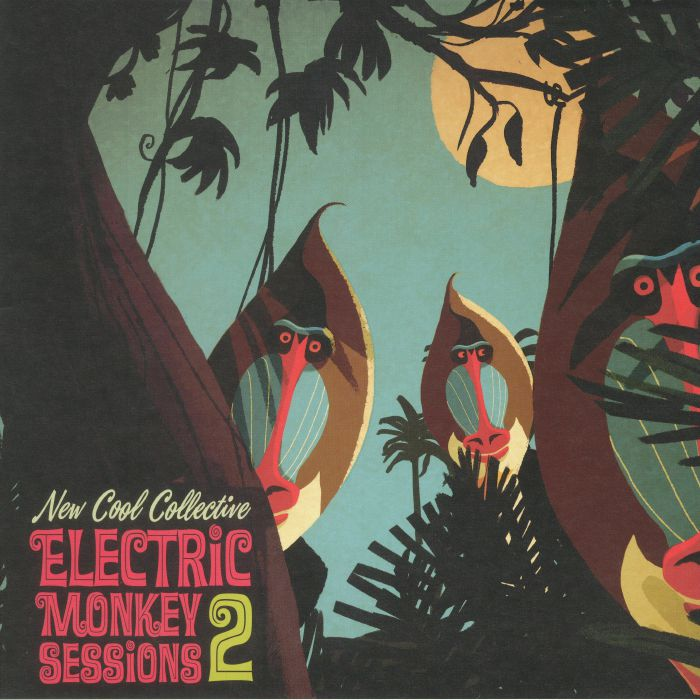 NEW COOL COLLECTIVE - Electric Monkey Sessions 2