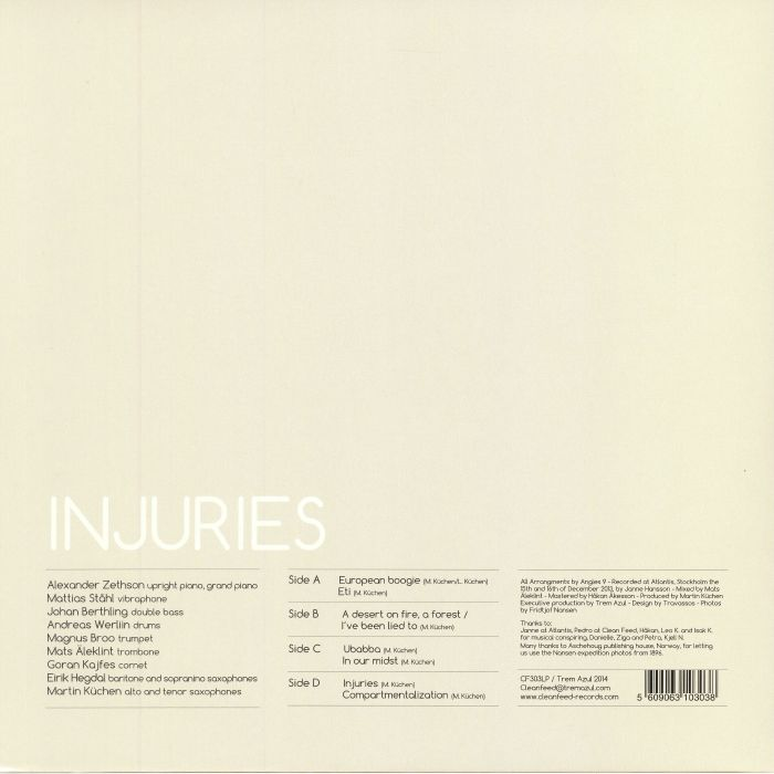ANGLES 9 - Injuries