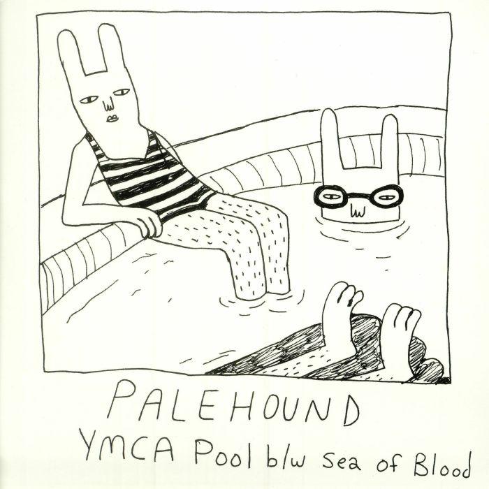 PALEHOUND - YMCA Pool