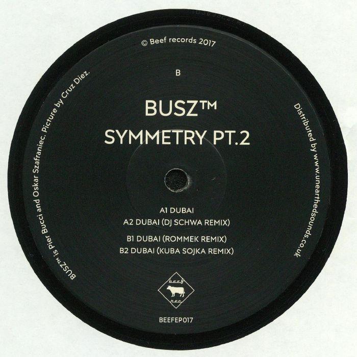 BUSZ aka PIER BUCCI/OSKAR SZAFRANIEC - Symmetry Part 2