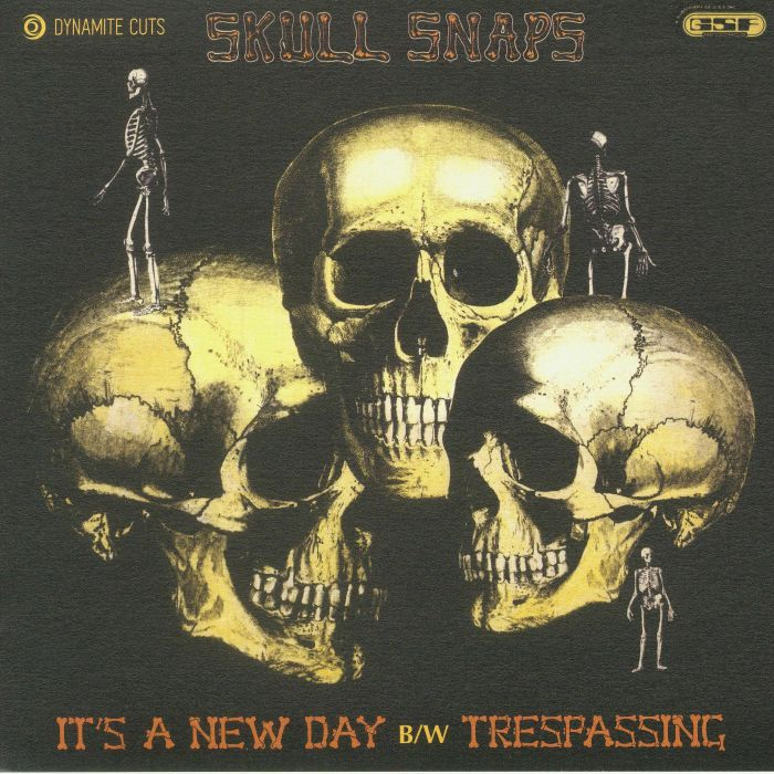 SKULL SNAPS - It's A New Day