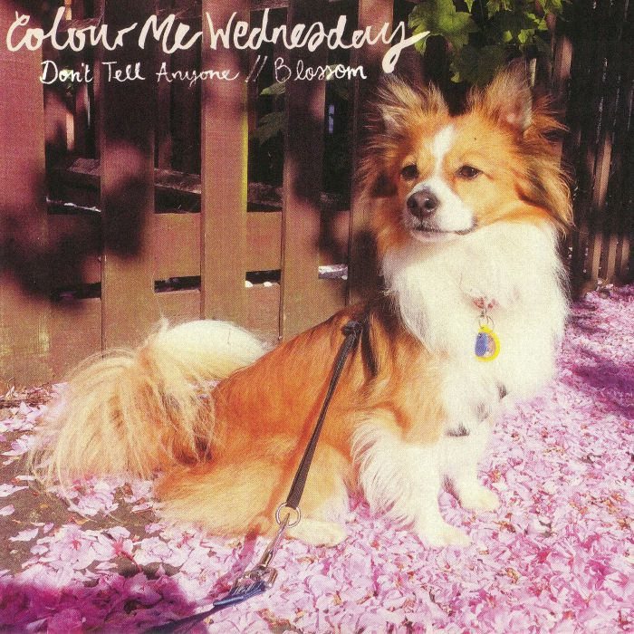 COLOUR ME WEDNESDAY - Don't Tell Anyone