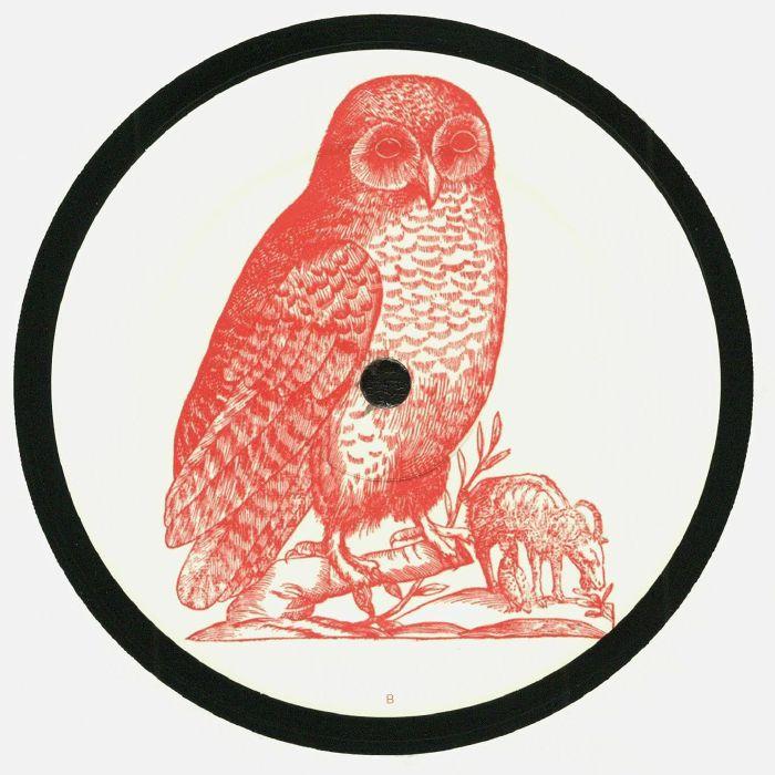 OWL - Owl 5