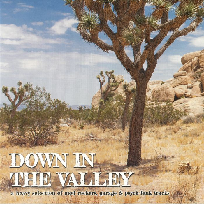 VARIOUS - Down In The Valley
